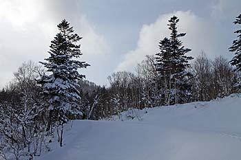奥手稲山は見えてこない 奥手稲山は全然見えてこない 日本海から流れてきた雪雲が石狩平野を横切って